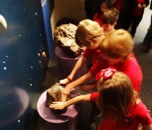 Monnig Meteorite Gallery 035 -c