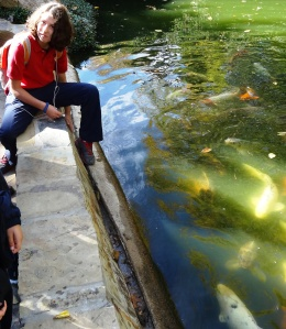 Natalie enjoys feeding the fish at the Japanese Garden.