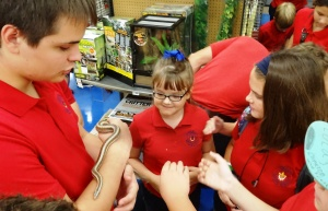 snake on arm