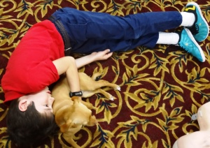 Ian is the dog napper.