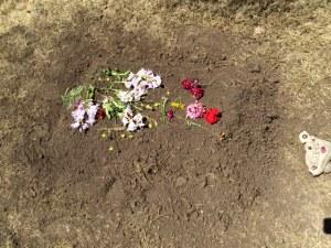 Saffey's grave