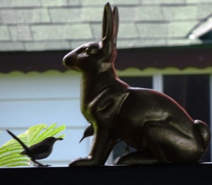 bird in rabbit