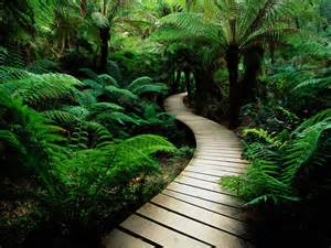 You choose the pathway of life.