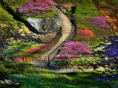 gardens (4)