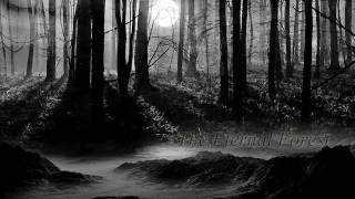 dark pic