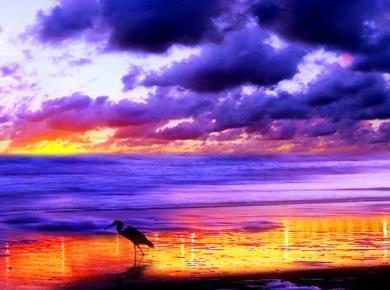 dawn 5b