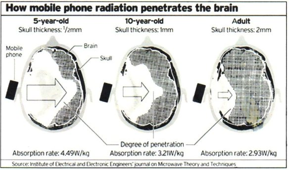 Telephone Cell effects on BRAIN