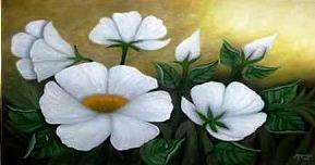 white flowers b