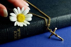 hand_touching_bible_cg2p03632c_th