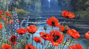 red-flowers-with-water