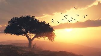 tree-and-birds