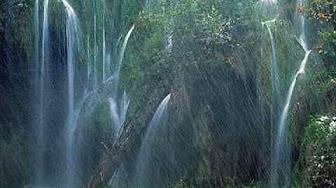 many-waterfalls