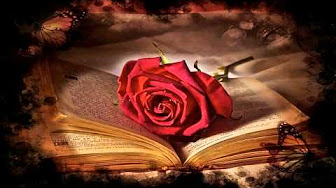 rose-on-book
